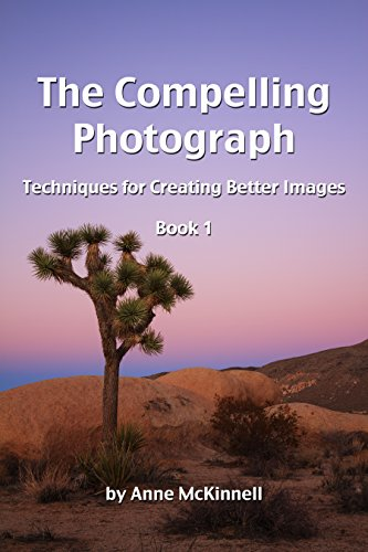The Compelling Photograph: Techniques for Creating Better Images (Book...