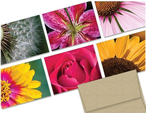 Note Card Cafe All Occasion Greeting Cards with Kraft Envelopes   36 Pack   Assorted Flowers Design   Blank Inside, Glossy Finish   for Greeting Cards, Occasions, Birthdays
