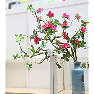 Artificial and Dried Flower Artificial Rhododendron Artificial Flower Fake Flower Decoration Foam Branch Soft Shape Azalea rhododendra – ( Color: Rose Red )