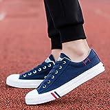 WangKuanHome Zapatos de Lona Transpirables de Verano Zapatos de Tendencia de los Hombres Zapatos de Lona Ocasionales Salvajes de los Hombres Zapatos de los Hombres (Color : Blue, Size : 43)