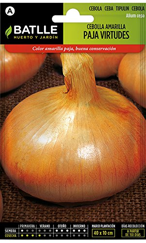 Batlle Gemüsesamen - Zwiebel - Gelb Paja Virtudes (1200 Samen)