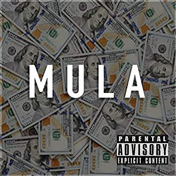 Mula (feat. MikeLarryBag & HollygroveAce)