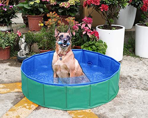 Yidarton Swimming Pool für Hunde Hundepool Doggy Pool Badewanne Pool Umweltfreundliches PVC Hundepool 120x30 cm Grün
