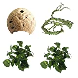 PINVNBY Reptile Hideouts Natural Coconut Shells Hut Small Animal Hide Cave Hermit Crab Climbing Toys Lizard Habitat Decor Plant Leaves Decoration
