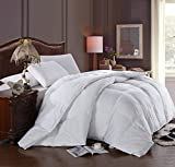 Royal Hotel King Sized Pillows - Best Reviews Guide