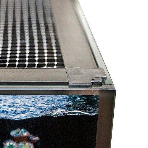 custom aquarium - 2