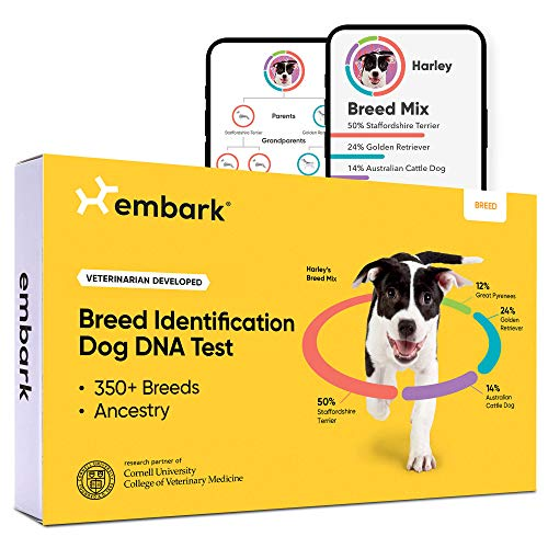 Save on Embark Dog DNA Test - Breed Identification Kit