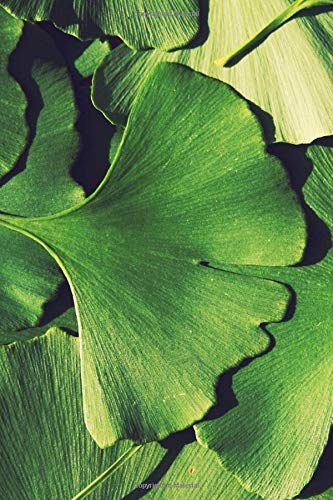 Green Fan-Shaped Ginkgo Leaves Nature Journal: 150 Page Lined Notebook/Diary/Journal