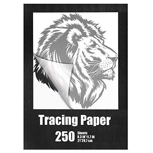 250 Fogli Carta da Lucido dell'Artista, 8,3 x 11,7 Pollici Formato A4 Carta da Disegno e da Lucido Traslucido Flessibile per Pennarello a Matita e Inchiostro, Leggero e Traspirante