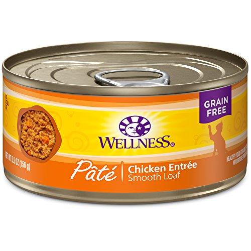 Wellness Grain Free Chicken Entree Pate Wet Kitten Food