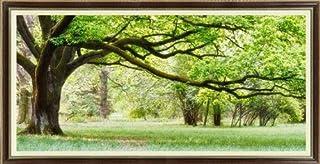 クロスステッチ 刺繍キット 大樹