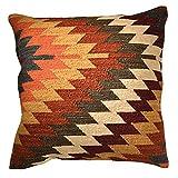 Comercio justo Alwar fundas de cojín de Kilim hecho a mano en telares con 80/20lana/algodón y tintes naturales, tela, multicolor, 60 x 60