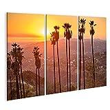 Cuadro en lienzo Griffith Park, Los Ángeles, California, EE.UU. Paisaje al atardecer. Cuadros Modernos Decoracion Impresión Salon