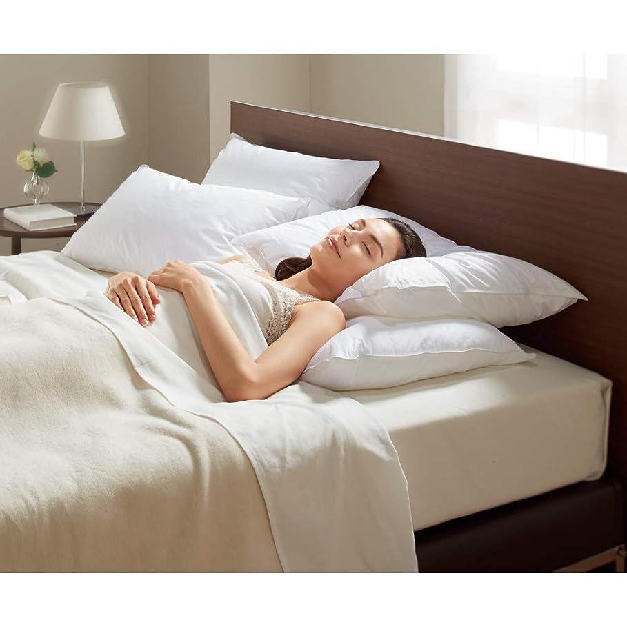 ラジカルスイ文明化する大判 (フォスフレイクス 安眠枕 お得な2個セット(枕のみ)) 654670