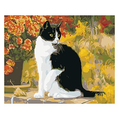 Yinuneronsty Gato negro sobre la mesa DIY pintura por números cuadro de pared moderno para niños