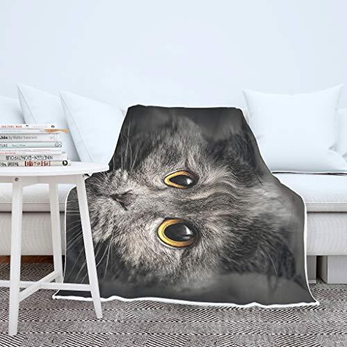 Wraill Bonita cara de gato con impresión 3D, manta para dormir, supercálida, para hombre y mujer, color blanco, 130 x 150 cm
