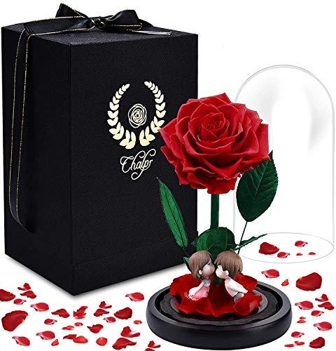Rose Éternelle, Chalpr Enchantée La Belle et la Bête Rose Réel en Verre Dôme, Élégant Eternal Rose sous Cloche pour Saint Valentin Fête Anniversaire Mariage Décor à la Maison Fête des Mères (Rouge)