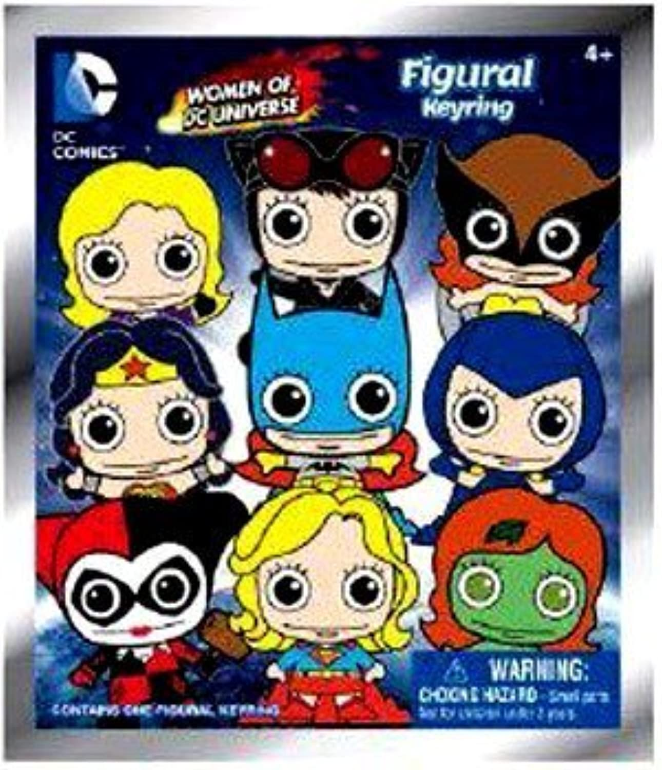 DC Comics 3D Figural Foam Keyring Women of DC Universe Series 1 Mystery Pack by DC Comics