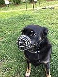 L&J Pets Uk Strong Metal Wire Basket Dog for Pappilon, Spitz e Altri Piccoli Cani