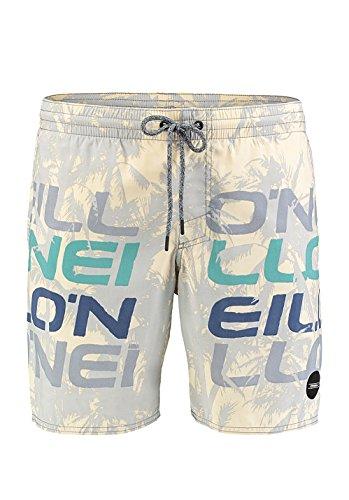 O'Neill Herren Boardshorts Stack Boardshorts