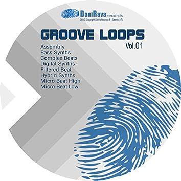 Danirava Groove Loop, Vol. 1