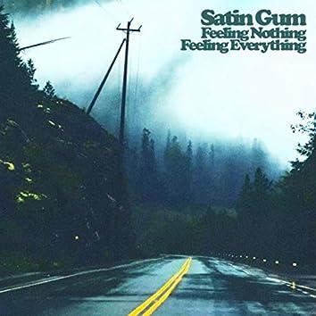Feeling Nothing Feeling Everything
