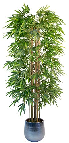 Maia Shop Bambú Cañas Naturales, Ideal para Decoración de Hogar, Árbol, Planta Artificial (180 cm), Materiales Mixtos