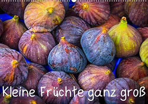 Kleine Früchte ganz groß (Wandkalender 2021 DIN A2 quer)