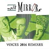 Voices (Flex & T Radio Edit)