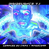 Vol. 1-Digidelights