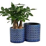 KYY Planters Flower Pots