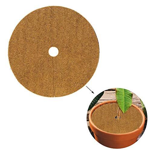 10 PCS Rond Naturel Fibres De Noix De Coco Disque De Coco Anneaux De Lutte Contre Les Mauvaises Herbes De Coco Doublure Pour Désherbant Couvercle Des Plantes Pot De Fleur
