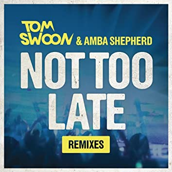 Not Too Late (Remixes)