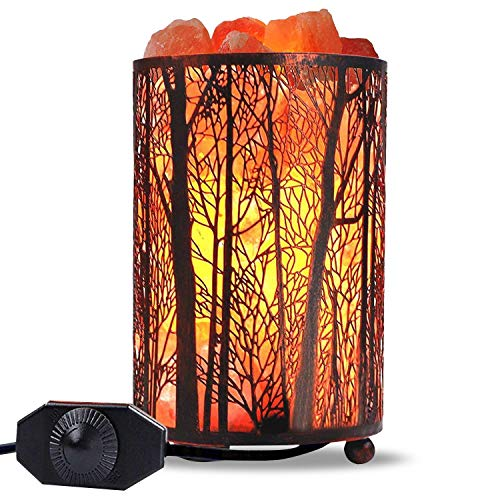 Himalayan Salt Lamp, Salt Rock Lamp Natural Night Light in Forest Design Metal Basket with Dimmer Switch (4.1 x 6.5 4.4-5lbs), 25Watt Bulbs & ETL Cord 1 Pack