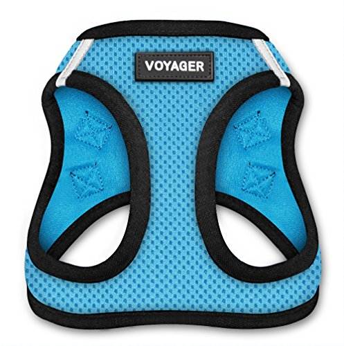 Voyager Step-In Air Dog Harness - All Weather Mesh, Step In Vest Harness for Small and Medium Dogs by Best Pet Supplies - Baby Blue Base, Medium (Chest: 16