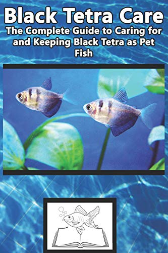 Black Tetra Care: The Complete Guide to Caring for and Keeping Black Tetra as Pet Fish