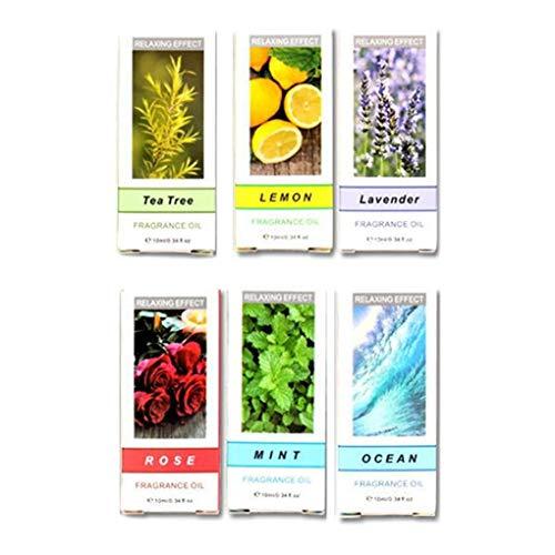 worahroe 6 unids/Set Pure Natural Aromatherapy Aceites Kit 10ml Humidificador de Agua Soluble en Agua Masaje de Aceite Esencial Aceite Esencial