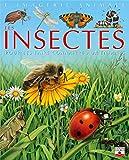 Les Insectes : Pour les faire connaître...