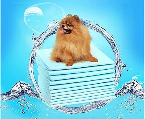 Paquete de 100 datos de salud animal de 33 x 45 cm, cambio de pañal para gatos y perros, pañales gruesos, sin fugas, desodorante para gatos