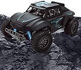 YYC Jouet tout-terrain radiocommandé Buggy Rtr Rc voiture 1:12 voiture tout-terrain haute vitesse 45 km/h voiture télécommandée sans fil gros pneu modèle de jouet en plastique camion noir jouets