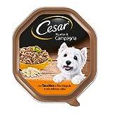 Cesar Recetas de Campo con Pavo y arroz Integral en una Hermosa Salsa 150G–Comida para Perros–Pack de 14Unidades