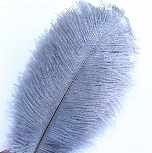Jeniorr Grey Oakland Mall Gray Max 53% OFF Ostrich Feathers for Carnival Crafts 15-70cm C