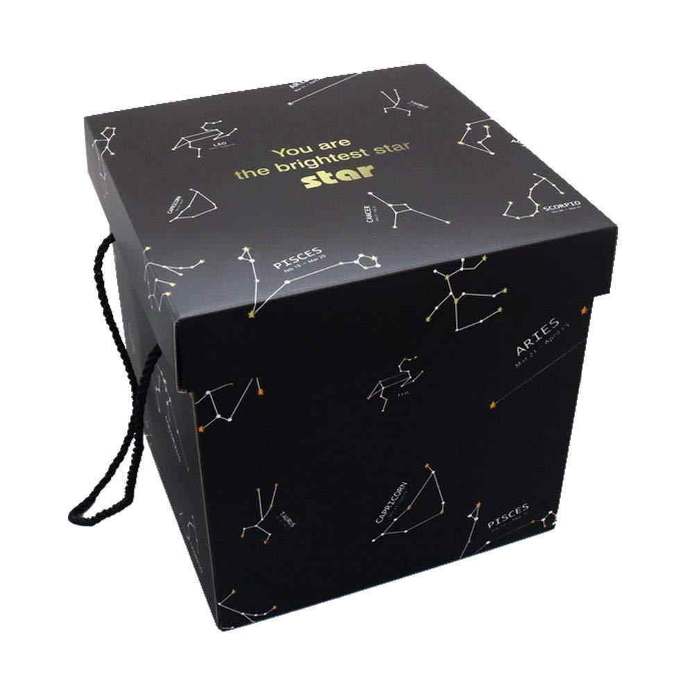 Beige getDigital 10973/Tirelire Chat Chat dans la bo/îte Cadeau pour Amateurs de Chats 15/x 12/x 12/cm Plastique