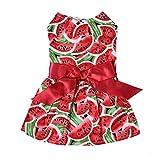 Balacoo Robe d'été pour Chien-Robe d'été de Chien Chérie pastèque Toutous élégant Bowknot Manches Chiot Jupe (XS, Rouge pastèque)