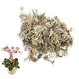 FSHOW Sphagnum Moos Für Bonsai, Orchideen, Orchideendünger Wassermoos Blumenerde, Wassermoos...