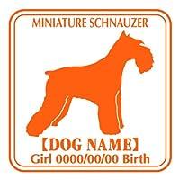 ワラ犬 ミニチュアシュナウザー (ミニシュナ) ステッカー Eパターン ボーイ ゴールド
