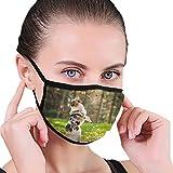 Wrution Máscara de Pastor Australiano Jugando en el Bosque, mascarilla para la Boca y el Polvo, mascarillas de Seguridad para Hombres y Mujeres, Deportes al Aire Libre Personalizadas