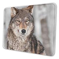 動物 狼 マウスパッド 25 X 30cm 滑り止め 防水 おしゃれ 洗える ビジネス用 家庭用 ゲーム用