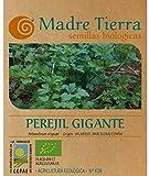Madre Tierra - Semillas Ecologicas de Perejil Gigante -(Petr