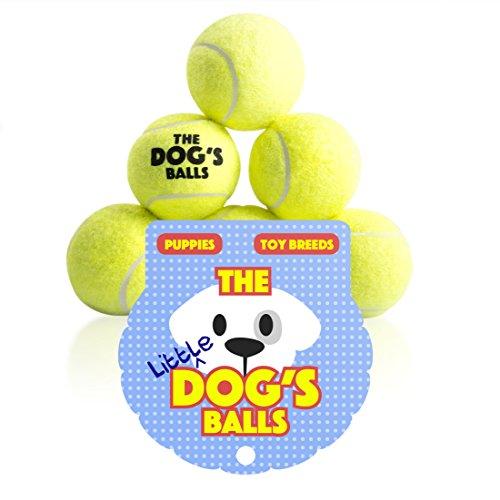 The Dog's Balls Der Hundeball Für Hunde. Der Ball Zum Spielen Und Trainieren. Diese Bälle Halten Ihren Hund Gesund – Das Beste Für Die Gesundheit Eines Hundes